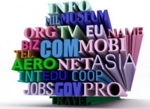 Alegerea corectă a domeniilor de internet